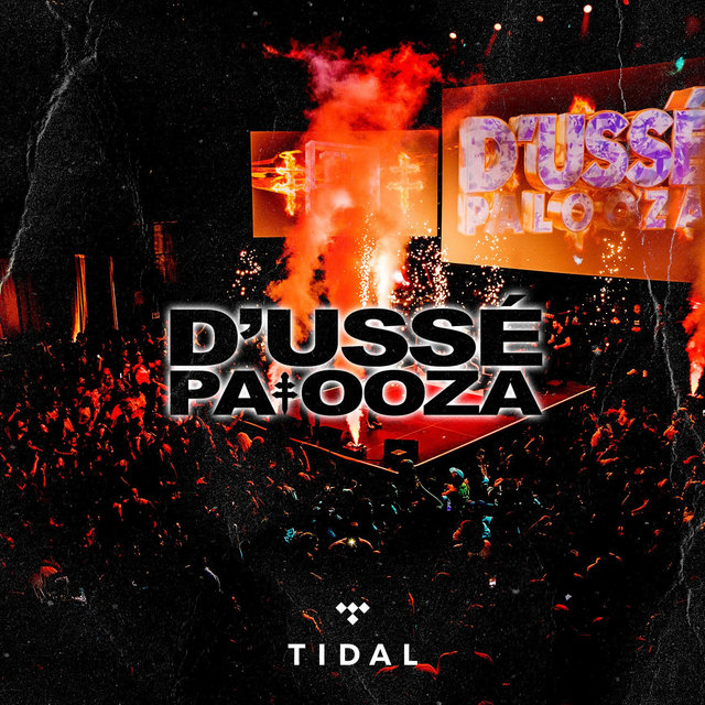 D'usse palooza at Barclays Center